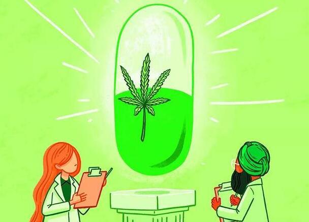 医用大麻可以有效治疗成人的慢性疼痛