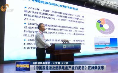 《中国氢能源及燃料电池产业白皮书》解读:确定我国氢能发展路线图