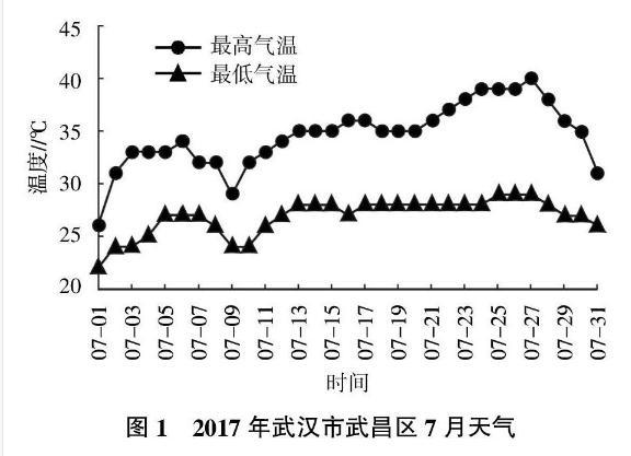 国内外不同玉米种质的耐热性评价与研究