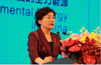 """北京燃气董事长李雅兰:消除LNG""""亚洲溢价""""时机已成熟"""