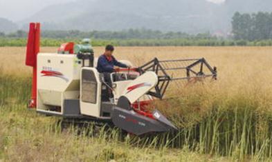 湖南省菜生产全程机械化创新推广现状与经济效益