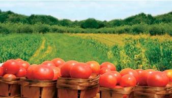 如何做好农产品产销对接?农产品产销对接新思路新布局