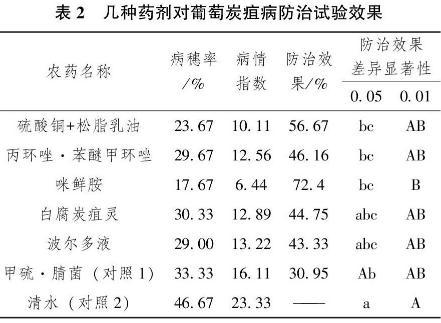 葡萄炭疽病用什么农药最好?炭疽病农药混用最佳配方表