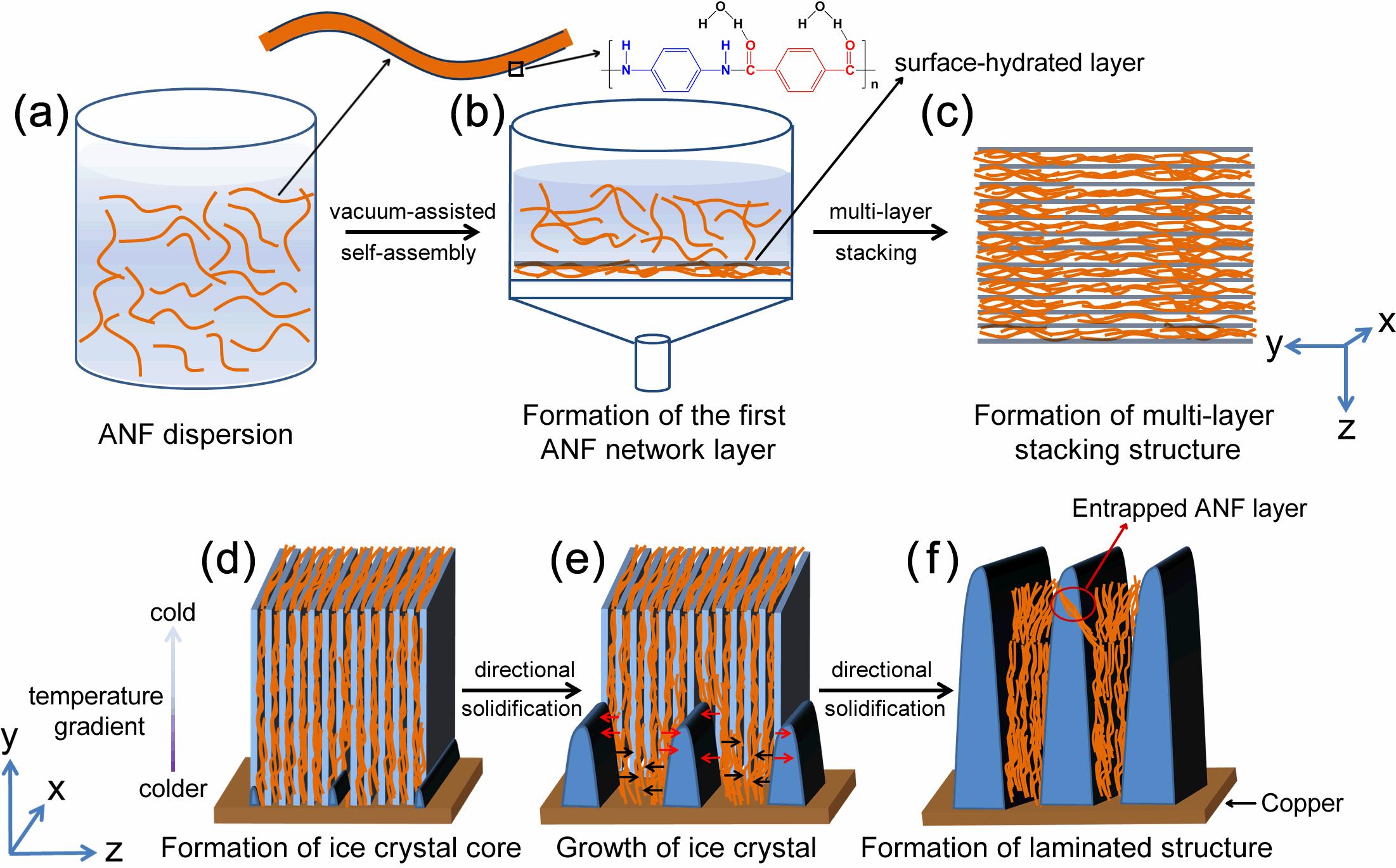 ?清华大学庹新林课题组将对位芳纶纤维制备成气凝胶材料