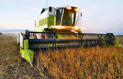 夏大豆机械化收获损失率高的原因及收获作为要点