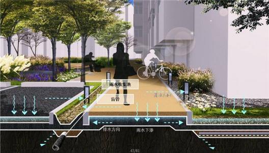"""上海市住建委主任称""""海绵城市""""等先进技术将在临港集成应用"""