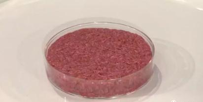 中国人造肉将上市!揭秘人造肉的培养过程及发展优势