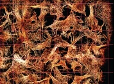 显微镜界黑科技:3D超分辨成像系统首次实现15 nm超精准定位