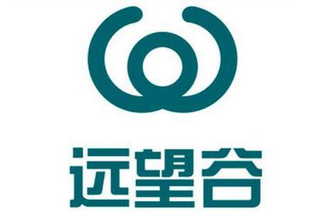 远望谷拟收购新加坡IVP九九视频在线观看视频49%股权,对新加坡子九九视频在线观看视频增资625万新币