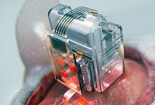 科学家发明用智能手机控制脑细胞的装置,有望提早诊断神经类疾病