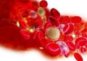 《青娱乐—极品视觉盛宴Av印发儿童血液病、恶性肿瘤相关10个病种诊疗规范(2019年版)的通知》
