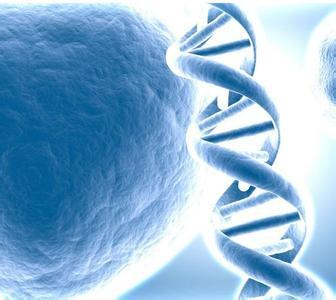 基因治療的原理與開發應用