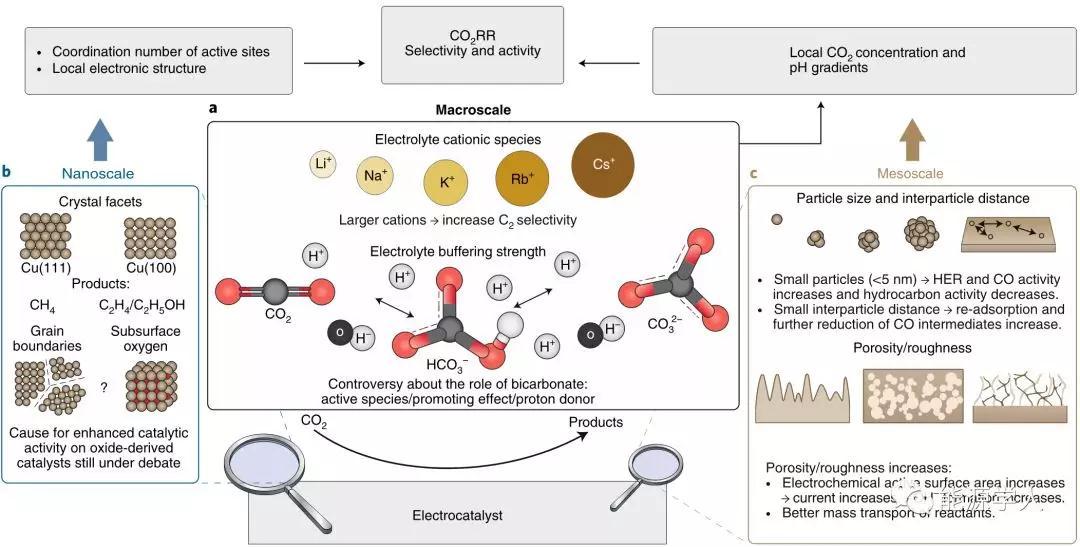 ?電化學二氧化碳還原的最新進展和挑戰