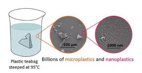 塑料材質茶包在熱水中會釋放多達上百億的微塑料顆粒