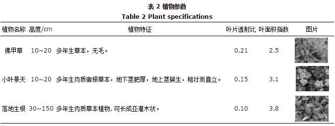 屋顶种什么植物隔热降温?屋顶绿化常用植物效果研究