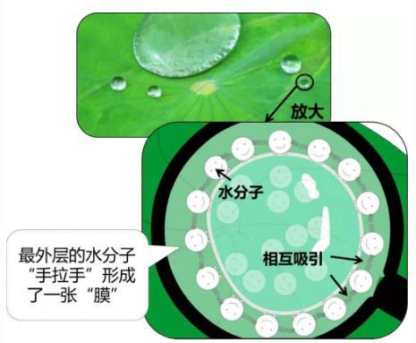如何檢測薄膜的表面張力?