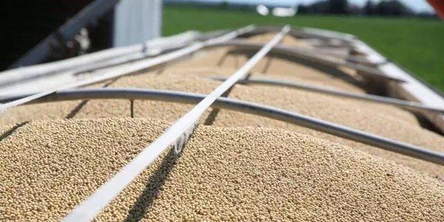 我国大豆需求量每年在1亿吨以上,80%以上需要靠进口