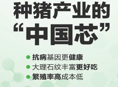 正奥新农业集团发展历程与战略——欲做中国生猪种业龙头企业