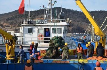 獐子島三季報預虧,獐子島扇貝逃跑上演續集