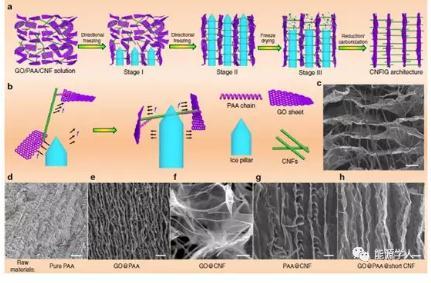 一种3D导电CNF互穿石墨烯片层结构的材料(CNFIG)