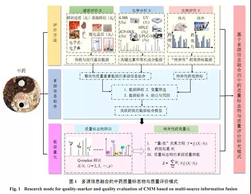 基于多源信息融合的中药质量评价模式、功效与特异性属性