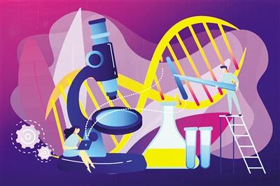 美国出台首部监管CRISPR的法律,将于2020年1月正式实施