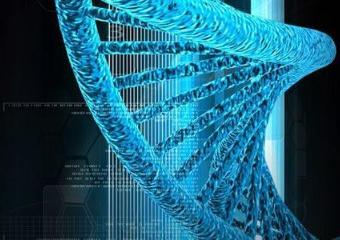 美国出台首部直接监管CRISPR的法律,将于2020年1月正式实施