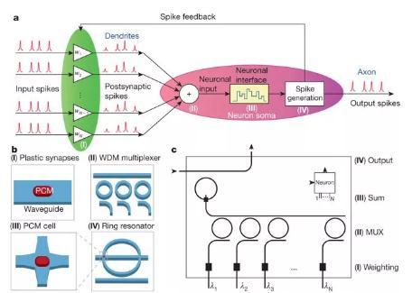 光学在人工智能算法的专用硬件中的作用