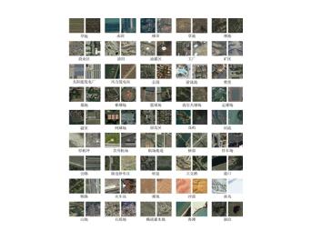 约克大学视觉研究员发现人脑并不会优先处理图像中的有趣区域