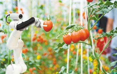 人工智能在农业领域的应用优势——平均省水50%、省电30%、省工90%