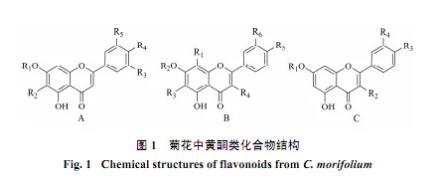 菊花化学成分、药理作用及质量标志物的预测分析