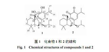 迷迭香的化学成分、活性研究方法