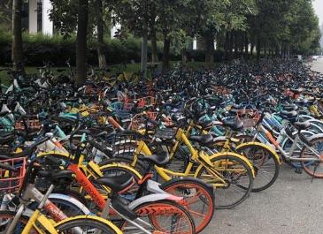 成都出台首个单车巡查清运回收管理办法:闲置超过120个小时必须回收