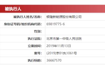 银隆新能源被列为被执行人,执行标的为3666.76万元