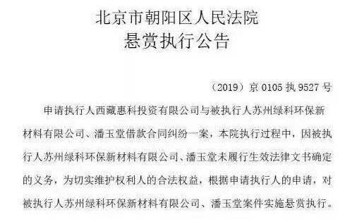 中国环保科技行政总裁潘玉堂欠债5000余万被列为老赖