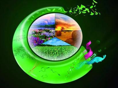 生物质能:探索从石化农业走向生态循环农业的途径
