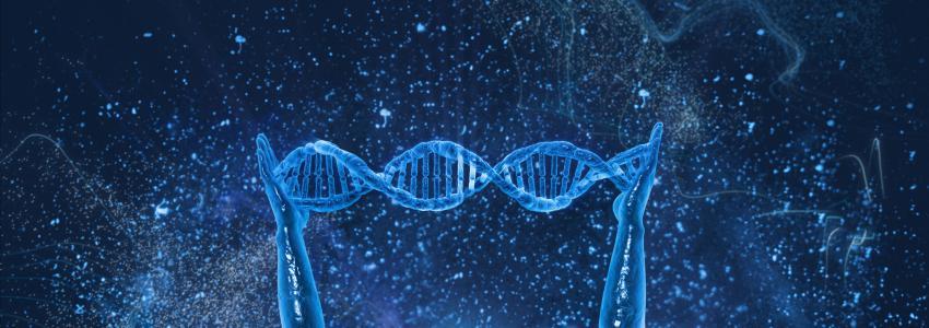 引领国际的第三代基因算法测序技术,测序仅需一天