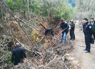 农夫山泉武夷山项目最新进展:被毁路段恢复植被,栽种树木为桂树