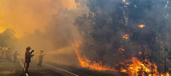 澳大利亚山火烧死10亿动物,气候变化的影响全球