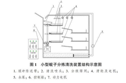 小型蚬子分拣清洗装置结构、工作原理及设计