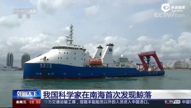 """深海生命的""""绿洲"""",南海首次发现鲸落,现代自然鲸落不足50个"""