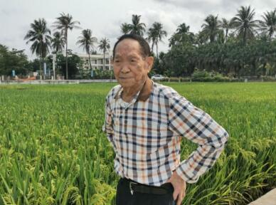 袁隆平称中国不会出现粮荒,完全能够实现粮食生产自给自足