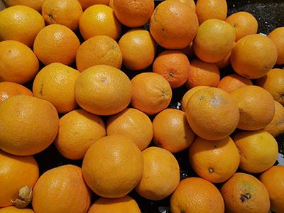 疫情对我国农产品进出口的影响及应对措施