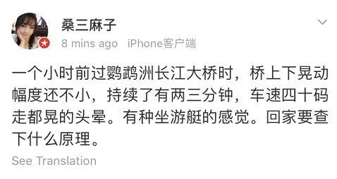武汉长江大桥晃动,关于4月26日鹦鹉洲长江大桥发生异常震动的情况说明