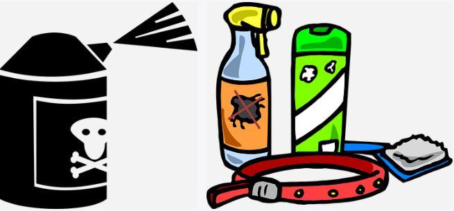 生物农药如何消灭蝗虫?生物农药与化学农药相比主要优势有哪些?