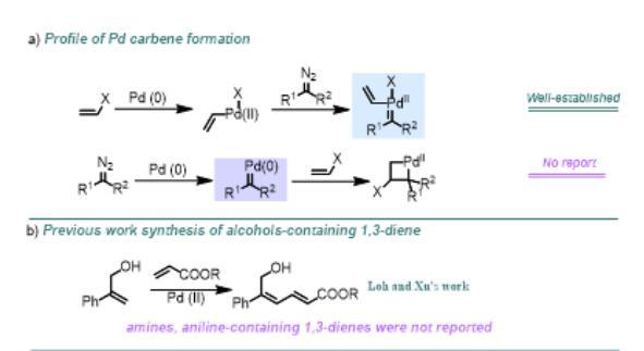 多取代丁二烯大环内酰胺化合物的构建新方法