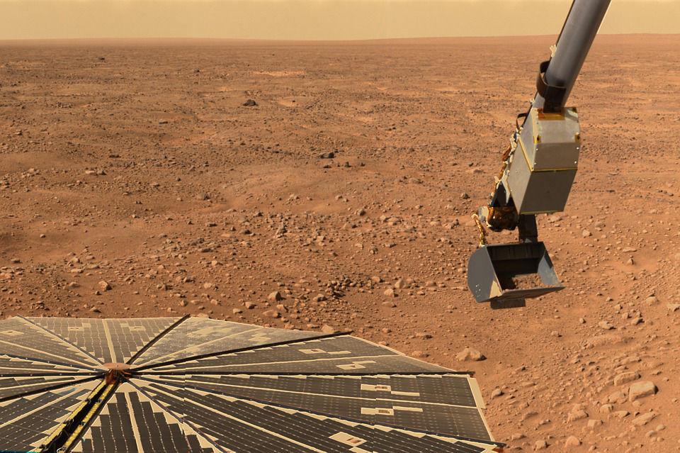 火星花园项目:超过45种植物实验,蒲公英火星上茂盛生长