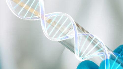 人类基因缺陷的秘密,功能缺失性突变