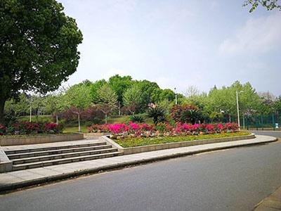 《漳州市城镇污水处理提质增效三年行动实施方案》印发