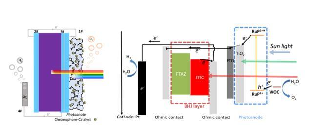 新研究:太阳能人工水分解制氢效率达到1.5%,胜过自然光合作用